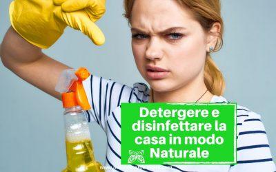 Aceto: il detergente multiuso per la casa privo di sostanze tossiche